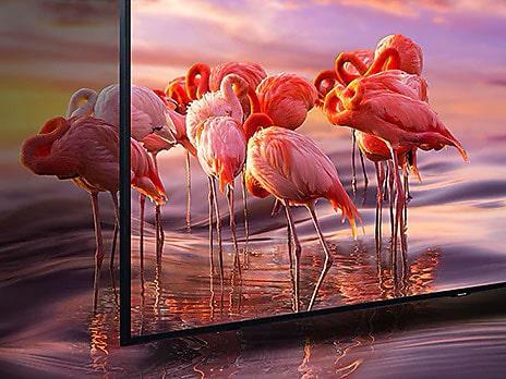 تلویزیون سامسونگ Q60R (1)